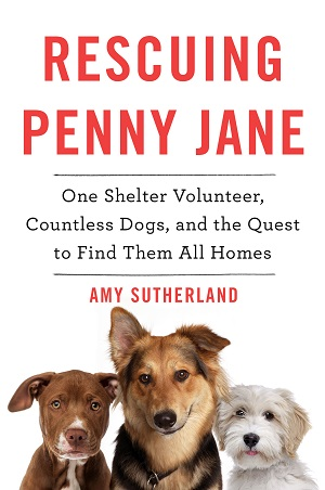 Rescuing Penny Jane by Amy Sutherland